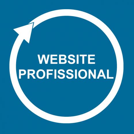 website-profisional